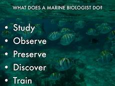 What Do Wildlife Biologists Do Interest Statement By Heather Ross