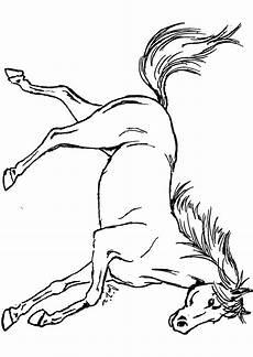 Ausmalbilder Malvorlagen Pferde Malvorlagen Pferde Springreiten Zum Drucken Mit Pferde