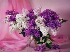 flower arrangements iphone wallpaper amazing flower arrangement wallpaper hd pictures