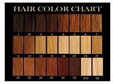 Boss Weave Color Chart Guest Post Selecting The Right Hair Colour For Your Skin