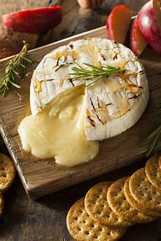 appetizers brie easy baked brie cheese appetizer recipe with honey