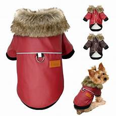 dogs coats for small dogs aliexpress buy waterproof clothes leather coat