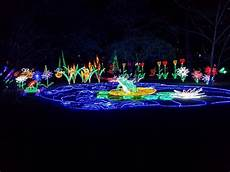 Garvan Woodland Gardens Christmas Lights 2018 Photo2 Jpg Picture Of Garvan Woodland Gardens
