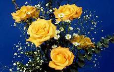 Yellow Flower Wallpaper by Yellow Flower Wallpapers Wallpaper Cave