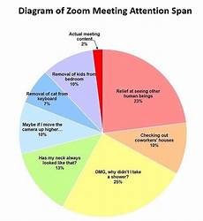 First Meeting Chart Diagram Of Zoom Meeting Attention Spans What A Week Via