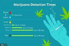 Marijuana Detection Chart How Long Does Marijuana Stay In Your System