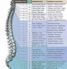 Spinal Pressure Points Chart Spinal Pressure Points Health Ailment Back