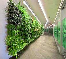 Plant Wall Lighting Wall Of Plants Brings Natural Benefits Under Artificial