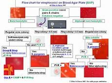 Bap Chart Qualita S Infectious Disease Blog June 2011