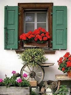 fioriere per davanzale finestra pin di roberta lavagnino su vita all aperto fioriere