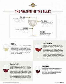 Your Premier Guide To Types Of Wine Glasses Types Of