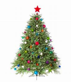 Free Images Of Christmas Trees Small And Cheerful Tabletop Christmas Trees