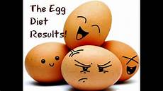 the egg diet results