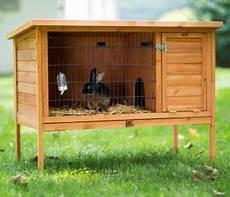 costruire gabbia conigli come costruire un fienile per conigli da soli