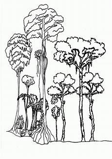 Ausmalbilder Urwald Tiere Ausmalbilder Urwald Tiere Ausmalbilder Urwald Tiere