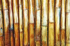 Bamboo Texture Bamboo Texture Abstract Photos Creative Market