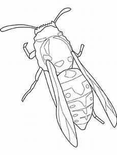 insekten malvorlage kostenlos tiffanylovesbooks