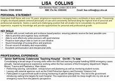 Examples Of Personal Statements For Resumes Personal Statement Examples For Jobs