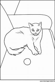 ausmalbilder katze kostenlos malvorlagen zum ausdrucken