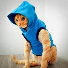 cat clothes cat clothing clothes for cats cat toure