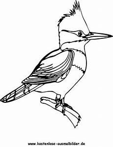Vogel Malvorlagen Ausmalbilder Vogel 1 Tiere Zum Ausmalen Malvorlagen Voegel