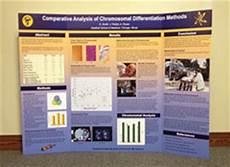 Tri Fold Poster Templates Makesigns Com Announces New Tri Fold Scientific Poster Service