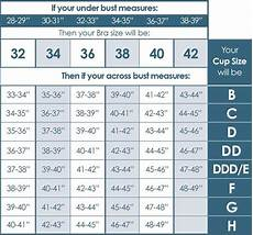 Big And Measurement Chart Bra Size Chart Google Search Bra Size Charts Bra Size