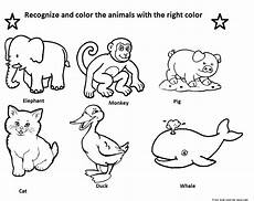identify animals coloring free printable coloring pages