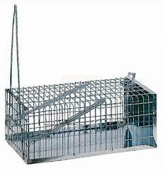 inserzioni la gabbia trappola a galleria per topi 30x16x12h gabbia cattura