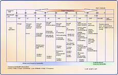 Cable Tv Frequency Spectrum Chart Rf Frequency Chart Images Yahoo Image Search Results