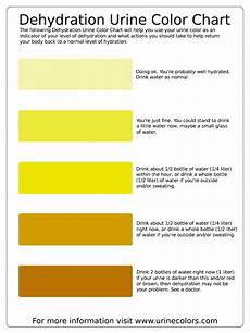 Dehydration Chart Adieha S Weight Loss Journey Dehydration Urine Colour Chart
