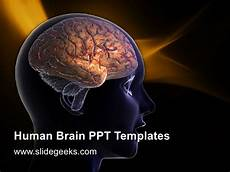 Brain Ppt Templates Human Brain Ppt Templates