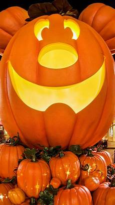 pumpkin iphone wallpaper free disney iphone wallpapers disney tourist