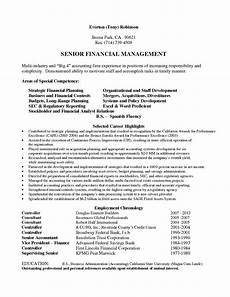Big 4 Resumes Big 4 Cv Template Professional Resume Examples Resume