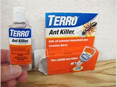 How To Get Rid of Sugar Ants for Under $20 in under 2 hours   How To Get Rid of Sugar Ants for