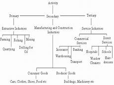 Business Activities Chart Business Activities Or Scopes Of Business