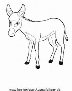 Malvorlage Esel Einfach Ausmalbild Esel 1 Zum Ausdrucken