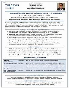 Cio Sample Resume Resume Samples Chief Information Officer Cio E Commerce