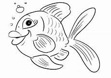 ausmalbilder unterwasserwelt kostenlos malvorlagen zum