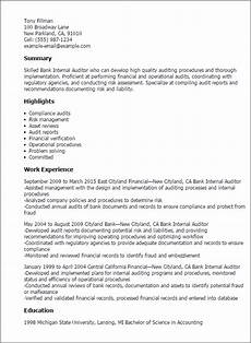 Internal Resume Template 1 Bank Internal Auditor Resume Templates Try Them Now
