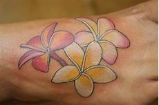 Plumeria Designs Gallery 100 S Of Plumeria Design Ideas Pictures Gallery