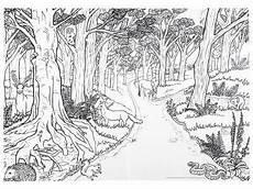 Ausmalbilder Erwachsene Wald Bilder Zum Ausmalen F 252 R Erwachsene 07 Tree And Leaves