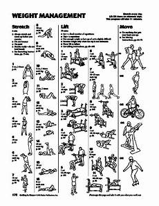 Free Weight Training Chart Getting Back In Shape Weight Management