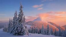 nature snow 4k wallpaper wallpaper carpathian mountains snow winter sunset pine