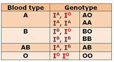 Genotype Chart For Blood Types What Is The Genotype Of A Father Whose Child Is In The O