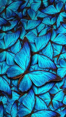 iphone lock screen butterfly wallpaper iphone 8 wallpaper blue butterfly 2020 3d iphone wallpaper