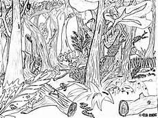 Malvorlagen Tiere Und Natur Ausmalbilder Wald 10 Malvorlagen Tiere Ausmalbilder