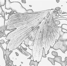 Aquarell Malvorlagen Ausdrucken Aquarell Vorlagen Zum Ausdrucken Fabelhaft Pin Ausmalbild