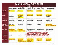 Mood Behavior Chart Daily Flow Sheets