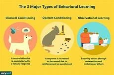 Cognitive Learning Definition Why Is It Important To Study Cognitive Psychology What Is
